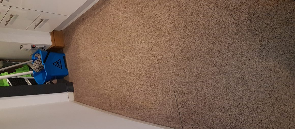 Carpet Cleaning Ballymun