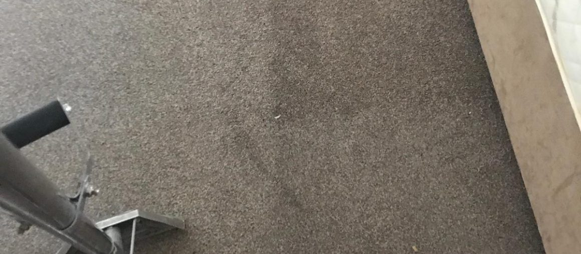 Carpet Cleaning Bray