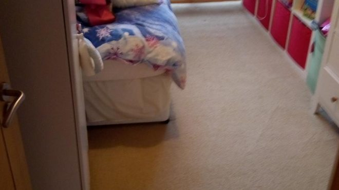 Carpet Cleaning Hollystown