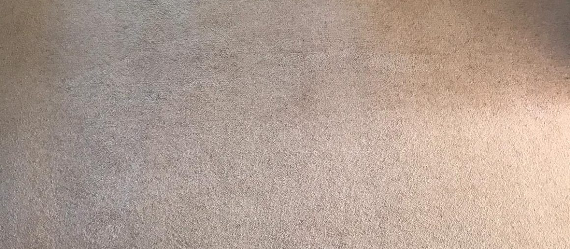 Carpet Cleaning Foxrock