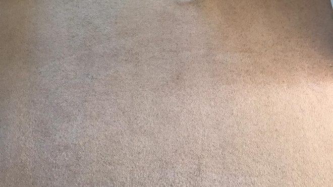 Carpet Cleaning Foxrock