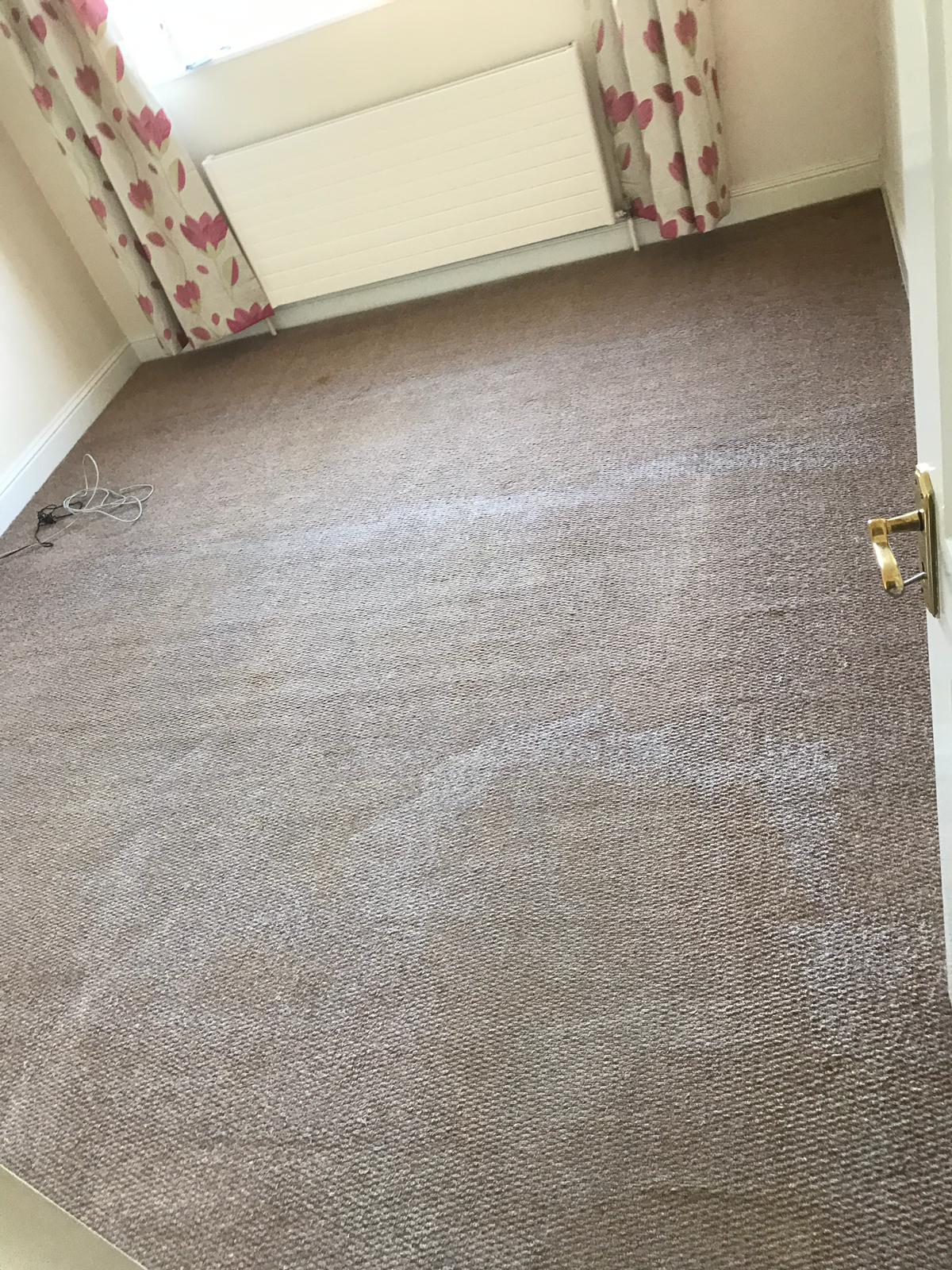 Carpet Cleaning Dublin 13 Organic Carpet Cleaning Company