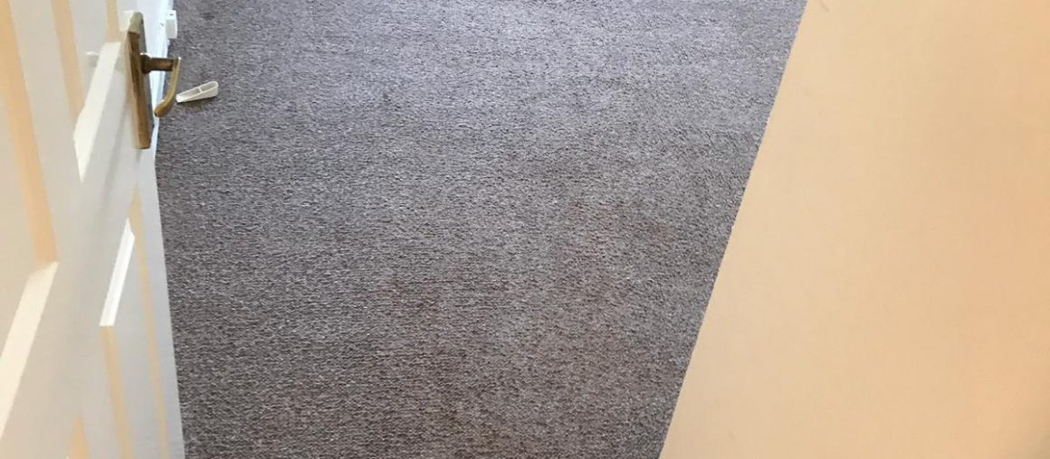 Carpet Cleaning Dublin 5