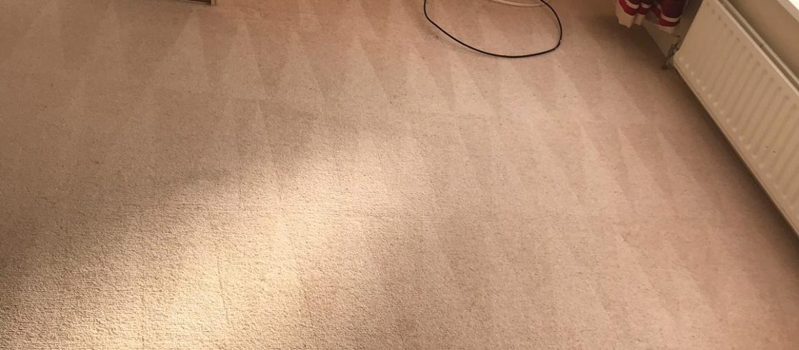 Carpet Cleaning Dublin 4