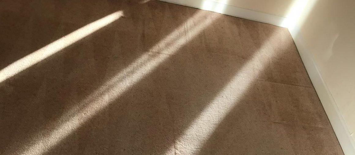 Carpet Cleaning Dublin 3