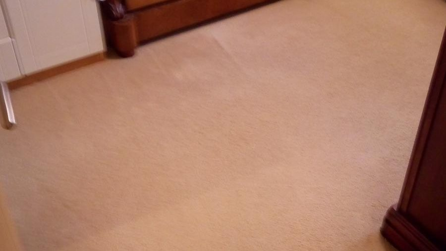 Recommended Carpet Cleaning Company
