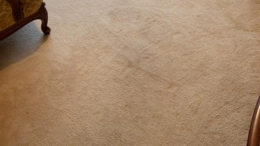 Hire Professional Carpet Cleaning Dublin Team And Spend Your Free Time With Friends!