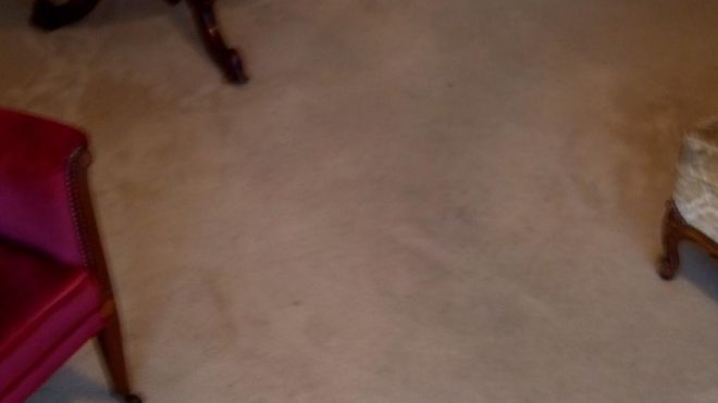 8 Carpet Cleaning Myths And Misconceptions Debunked