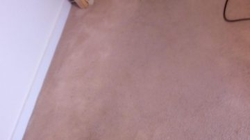 Carpet Cleaning Dublin - 1 Hour Drying Service