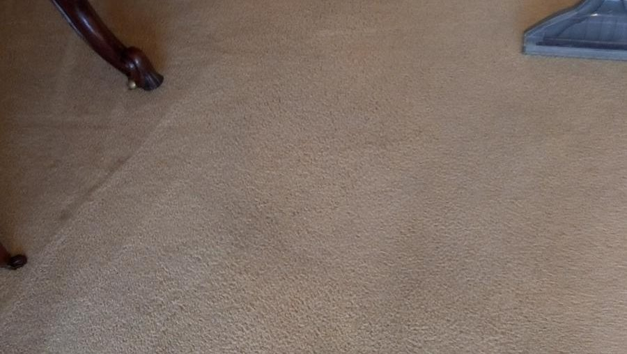 Commercial carpet cleaning in Dublin