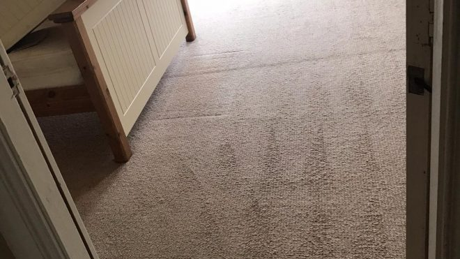 Use Professional Carpet Cleaning Contractors