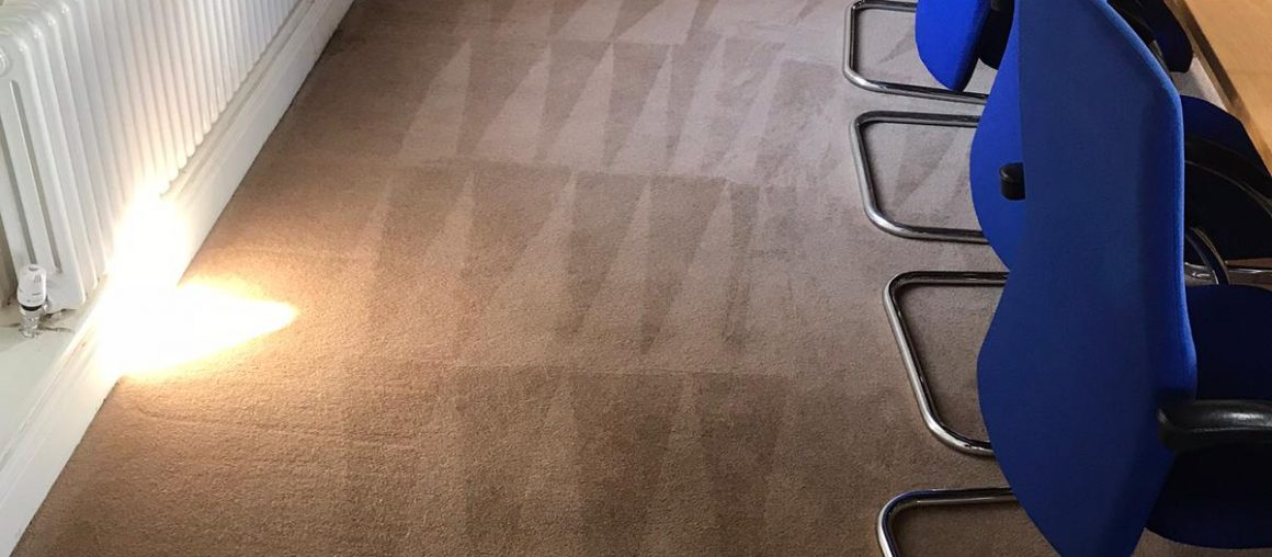 Local Carpet Cleaner