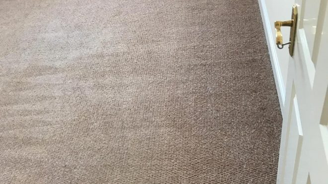Thinking Of DIY Carpet Cleaning? Here's Why You Should Pause Your Plans