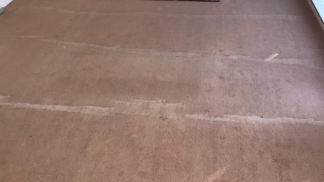 Carpet Cleaning Ballinteer