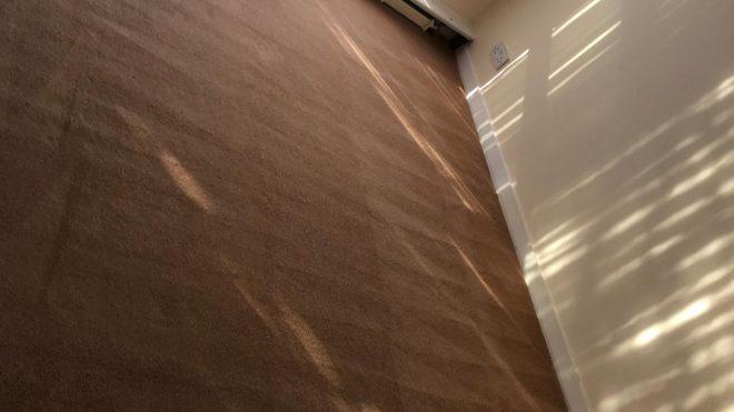 Carpet Cleaning Terenure