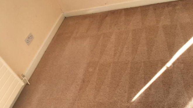 Carpet Cleaning Stepaside