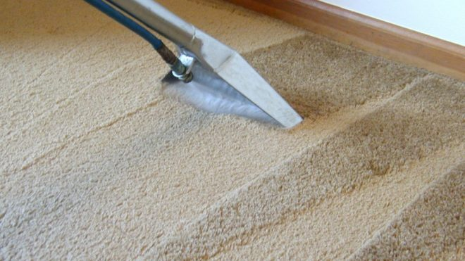 Carpet Care With A Professional Touch