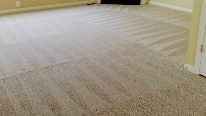 When It's Time To Have Your Carpets Cleaned, Turn To the Specialists For The Task