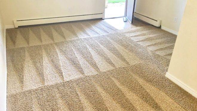 Catering To Your Carpet Cleaning Needs