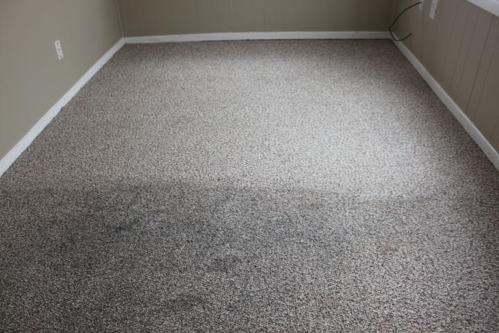 Carpet Cleaning Professionals Ready To Take Care Of Your Needs
