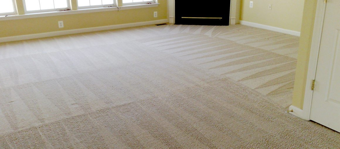 Carpet Cleaning Experts That Will Give You Quality Services