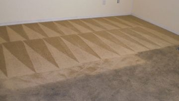 We'll Give Your Carpet A Thorough Wash