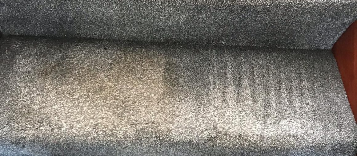 Is Your Carpet Making You Sick? How To Find Out The Truth And Keep Yourself Safe