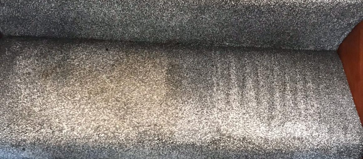 What's In A Dirty Carpet?