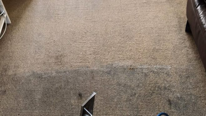 Water Damaged Carpeting - How To Deal With It
