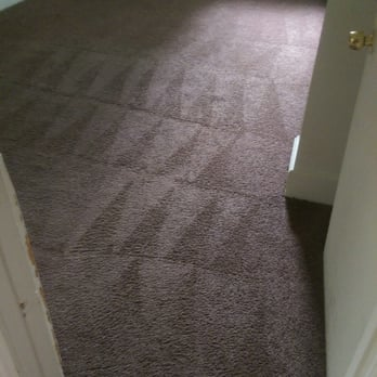 Your Carpet Needs More Than Just Vacuuming