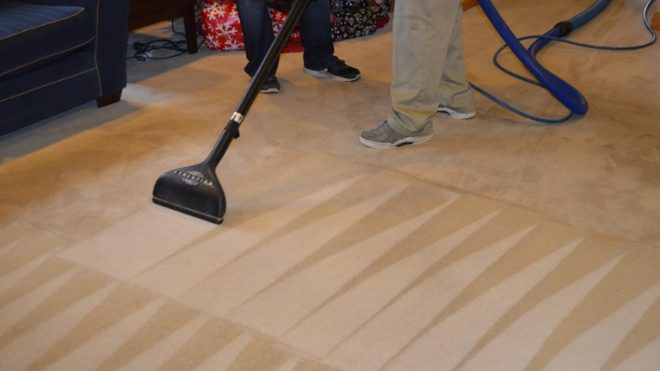 Do You Still Believe These Carpet Care Myths?