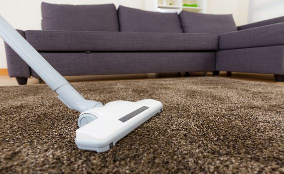 Getting Ready For The Holidays With Quality Carpet Cleaning
