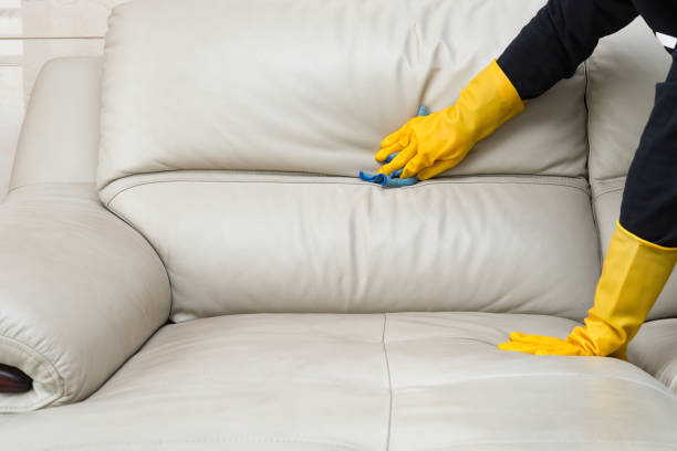 Maintaining Your Leather Sofa At Home- What Should You Do?