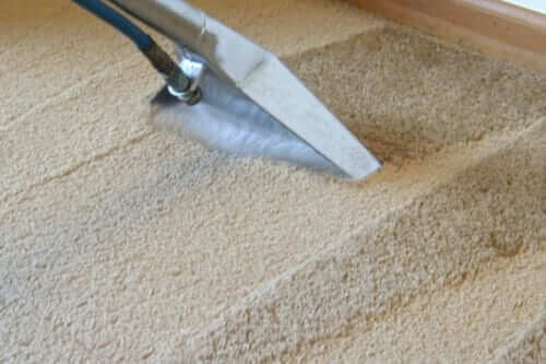 When Cheap Becomes Expensive – The Price Factor In Carpet Cleaning Services