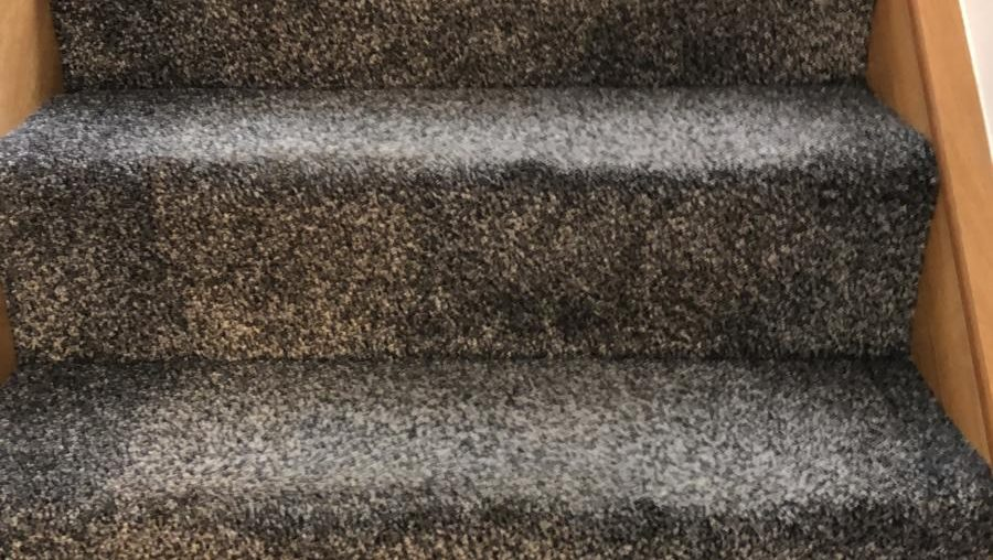 Why You Should Get Your Wet Carpet Dried As Soon As Possible