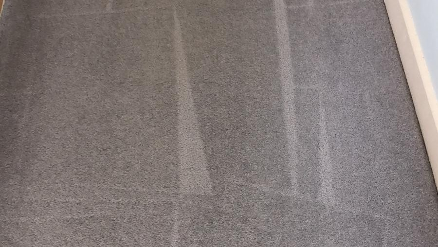Why Getting Professional Carpet Cleaning Services Is Important