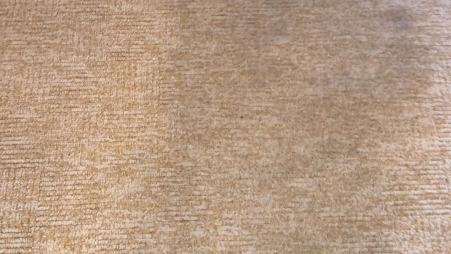 Take Care Of Your Carpet With Routine Cleaning Services