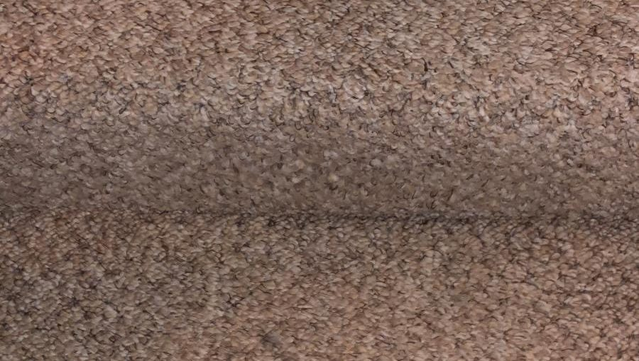 Spruce Up Your Office With Quality Carpet Cleaning Services