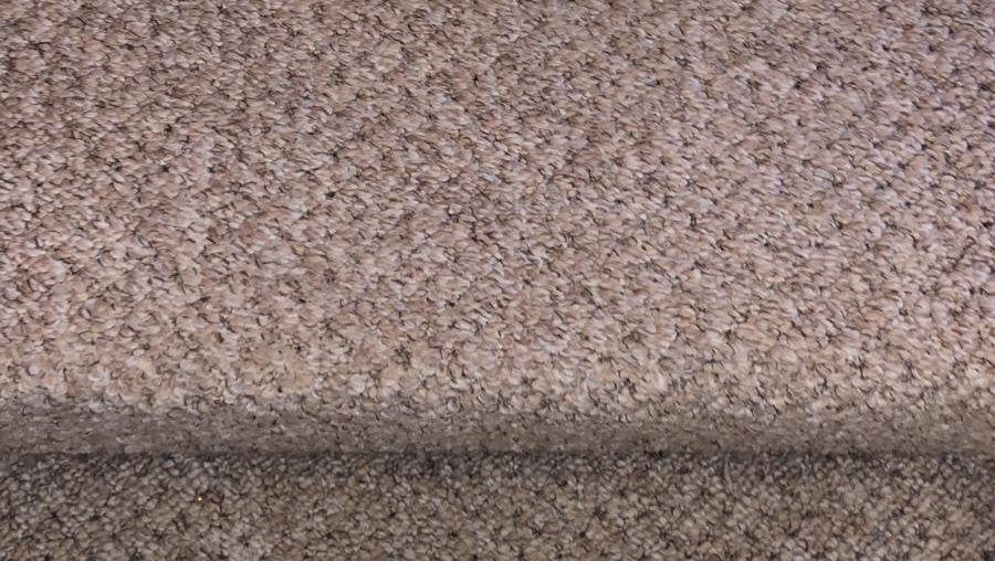 Comparing Different Carpet Cleaning Methods