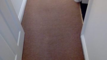 Prepping For Summer With Quality Carpet Cleaning