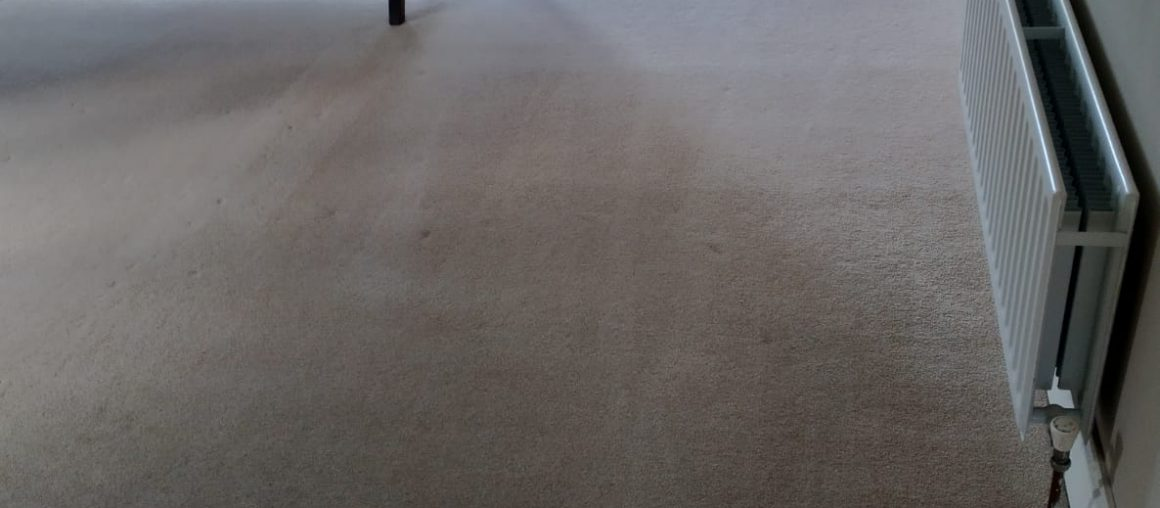 5 Benefits You Get When Hiring Professional Carpet Cleaning Services