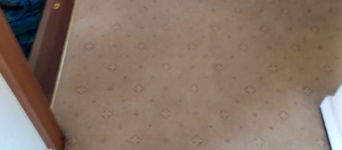 Valuing Your Carpet With Professional Care Services