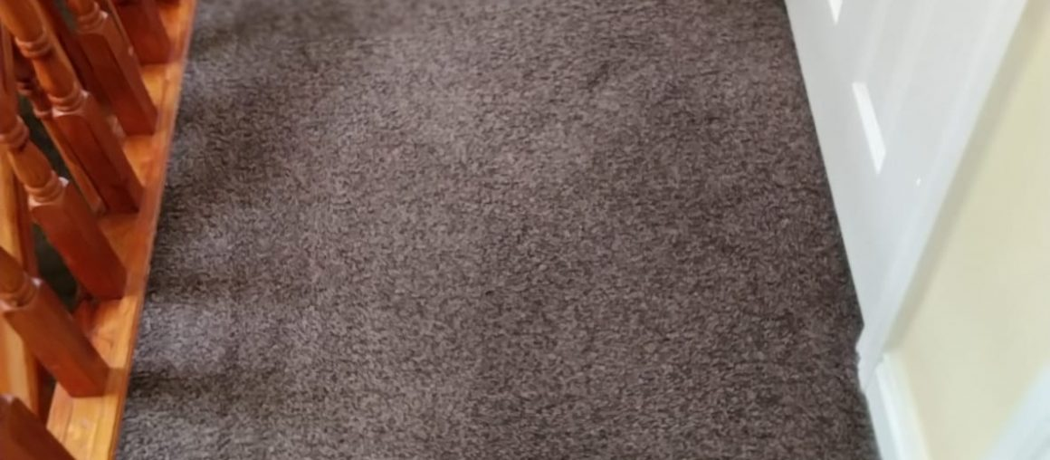 Comparing Spray Versus Plastic Carpet Protectors For Maintenance After Carpet Cleaning