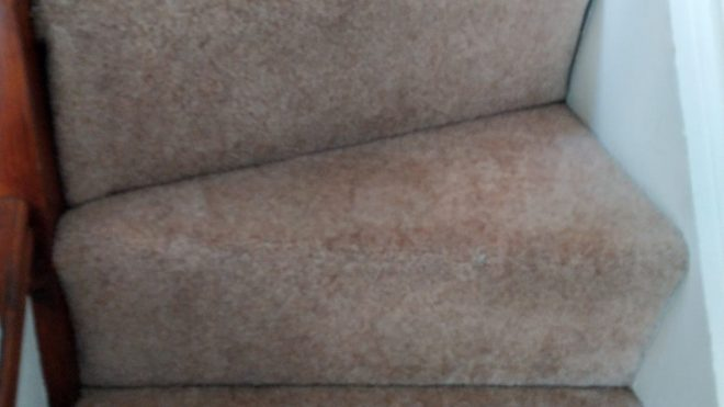 4 Reasons Why Commercial Carpet Cleaning Matters