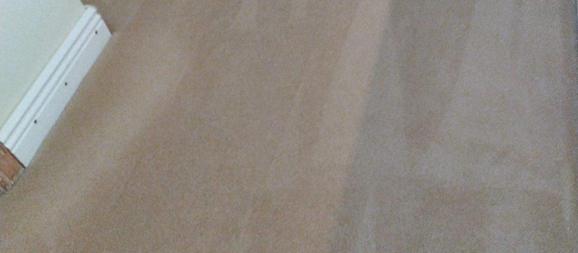 Carpet Cleaning Ranelagh