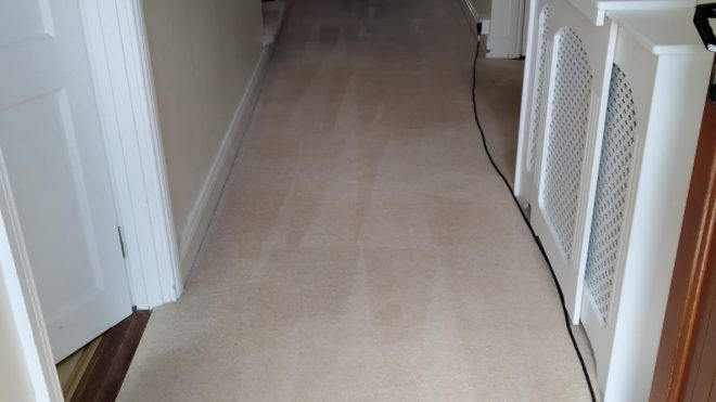 Hire Commercial Carpet Cleaning Services For Your Business
