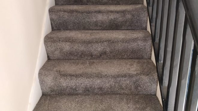 Stain Problems On The Carpet