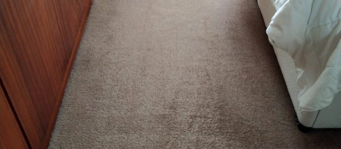 Carpet Cleaning Services For Vacation Homes