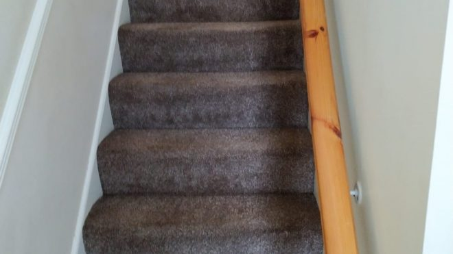 Carpet Cleaning Is Essential For A Healthy Home