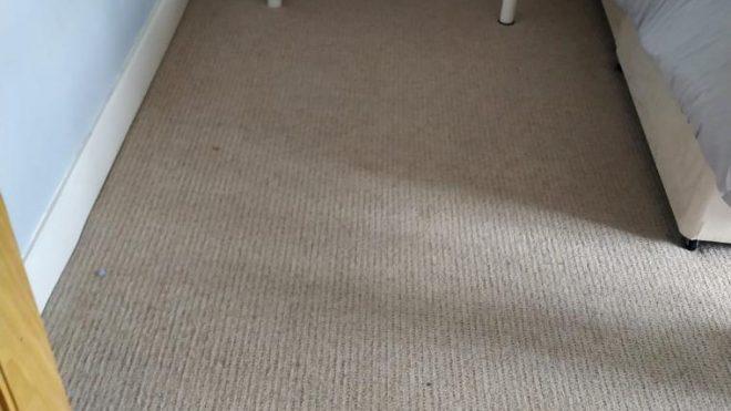 Carpet Cleaning Stillorgan